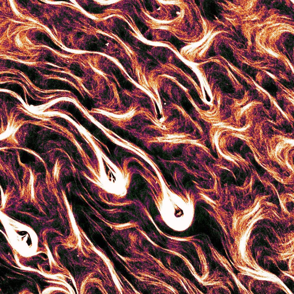 anis senoussi in vitro purgatory